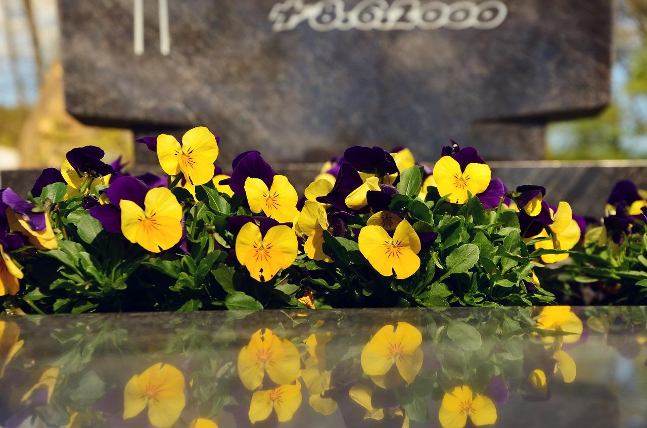 usługi pogrzebowe bydgoszcz