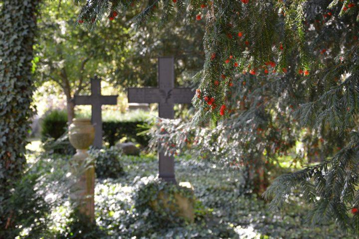 Usługi pogrzebowe Jelonki